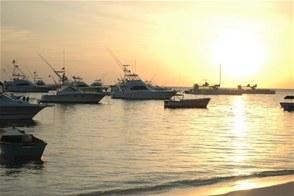 Hotel Eloisa presenta: Los Mejores Eventos en Puerto Vallarta-56 Torneo Internacional de Pesca Marlin y Pez Vela