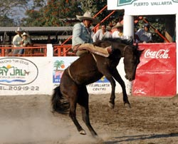 Eloisa Hotel in Puerto Vallarta feature the best events-National Championship -Charro Vallarta